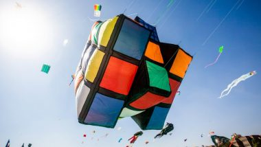 International Kite Festival 2019: Colourful Kites Deck Up the Skies in Ahmedabad